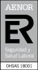 Marca ER OHSAS 18001 rgb1